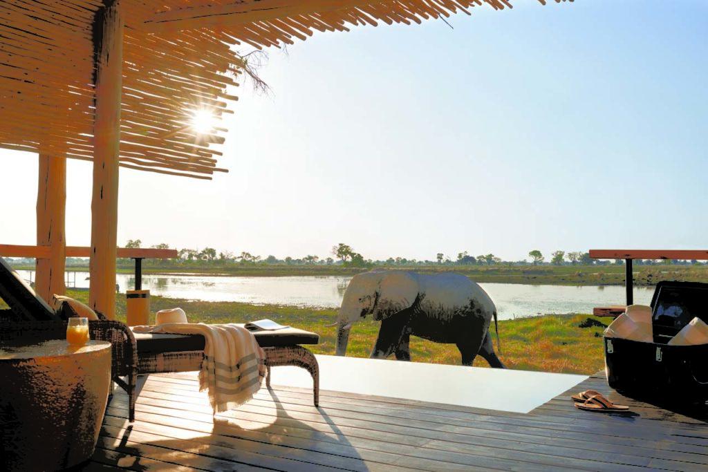 Belmond Safaris, Eagle Island Lodge, Okavango, Botswana.