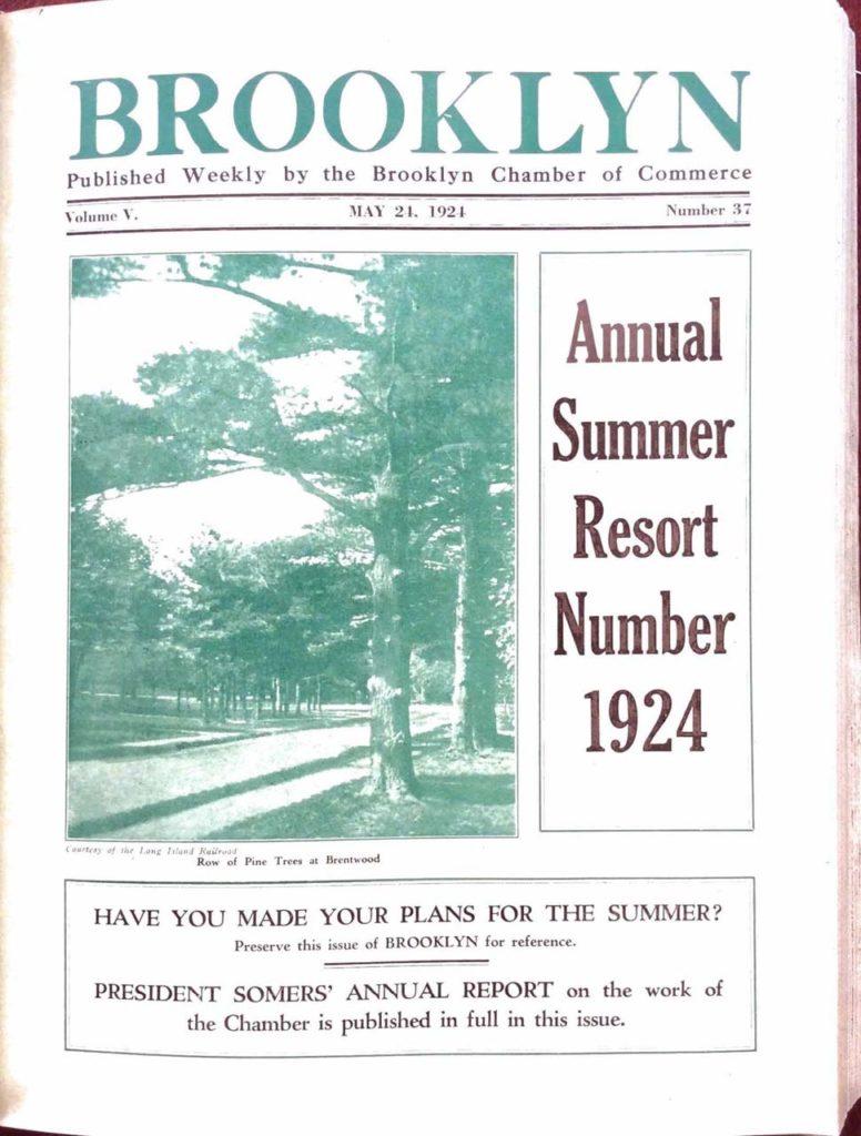 Brooklyn Annual Summer Resort