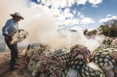 Tequila and Mezcal Spirited Differences-Zuma Press