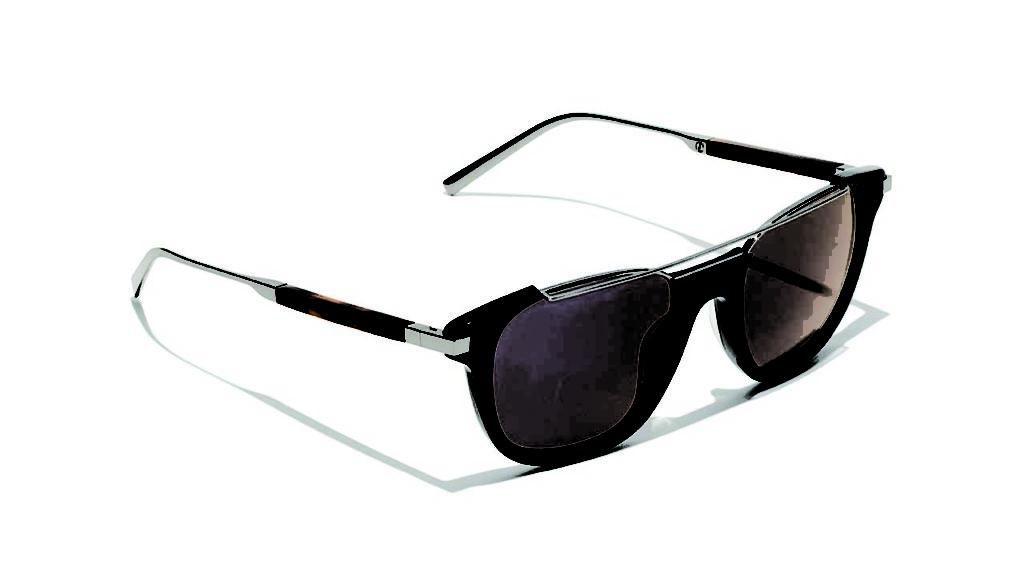 Ferragamo Acetate Sunglasses