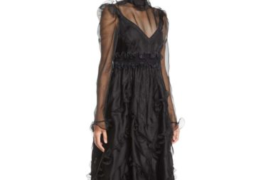 Valentino Long-Sleeve High-Neck Ruffled Organza Evening Gown