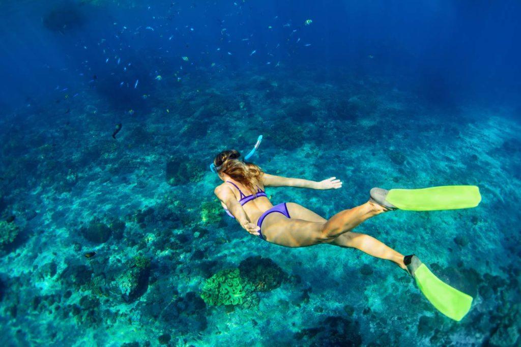 Aruba Bob Snorkeling-shutterstock_682950964