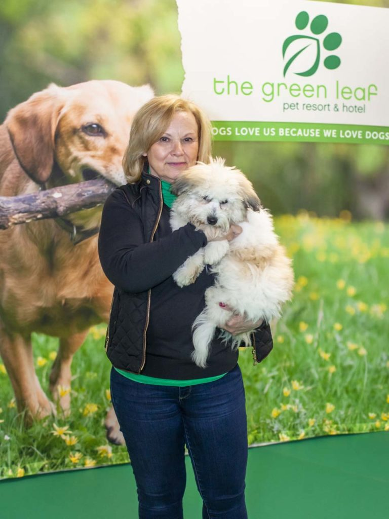 Final Green Leaf Pet Resorts_004