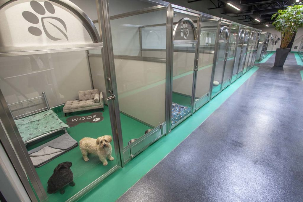 Final Green Leaf Pet Resorts_018