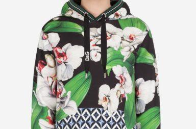 Dolce Gabbana Cotton Hoodie_1